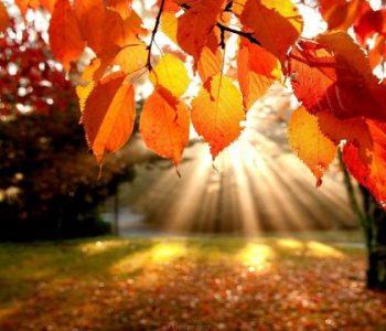 Уште два дена уживајте во сонцето, потоа следи промена на времето