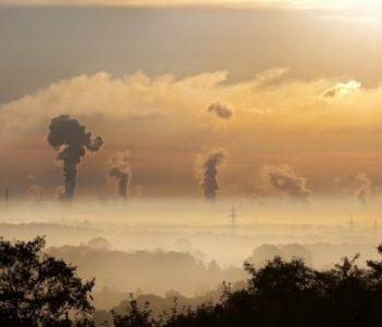 Јадете го ова кога е загаден воздухохот! Го чисти организмот од загадена средина и зрачење!