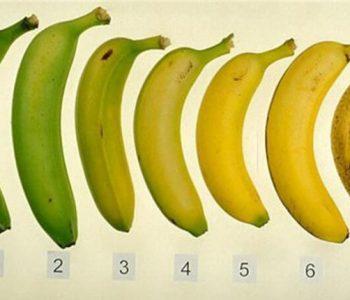 Која од овие банани е најдобра за вашиот организам?