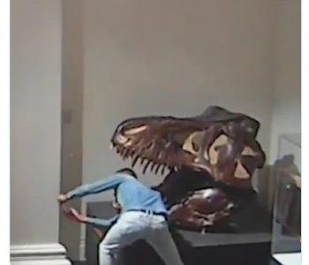 """Упаднал во музеј, крадел и направил """"селфи со диносаурус"""""""