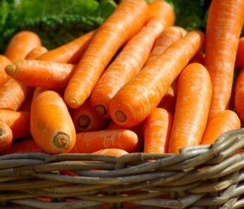 Нема да верувате што направи од обичен морков (видео)