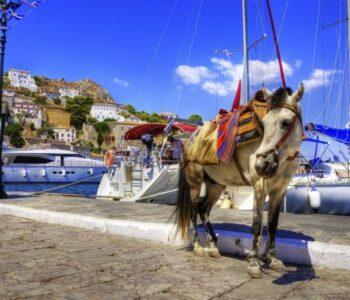 Најромантичното место на Медитеранот: Нема звуци, мотори, единствениот превоз е магарето