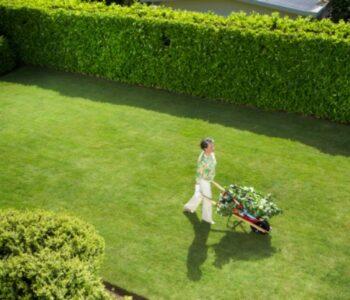 Истражување во Велика Британија: Луѓето што имаат градина или бавча имаат и повеќе здравје